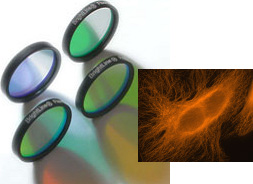 Quantum Dots and Brightline filters